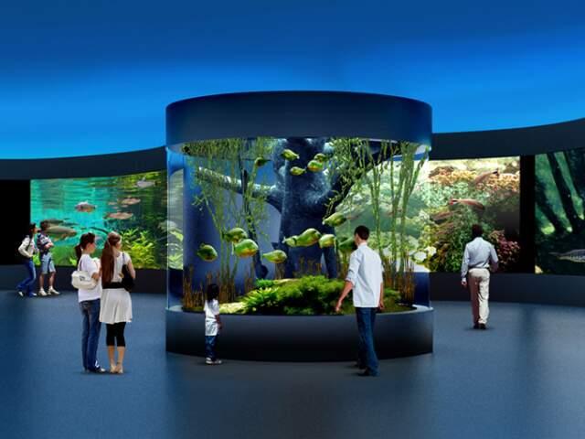 Centro de visitação terá tanques internos e externos e vão concentrar as atrações de base do Aquário do Pantanal.