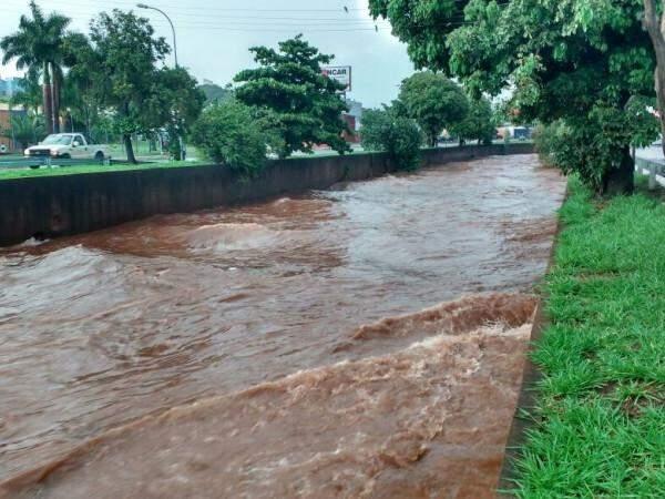 O rio Anhanduí, pouco depois do Horto Florestal, também ficou cheio (Foto: Adriano Fernandes)
