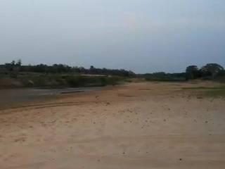 De acordo com o Instituto Pantaneiro, o Rio taquari hoje possui aproximadamente 100 km de seca (Foto: Direto das Ruas)