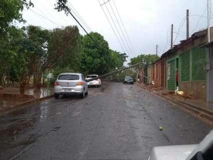 """Mini ciclone"" arranca sete postes de energia e árvores no Zé Pereira"