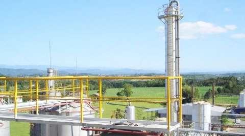 Programa Estadual quer atrair indústrias que façam MS neutralizar emissão de gás