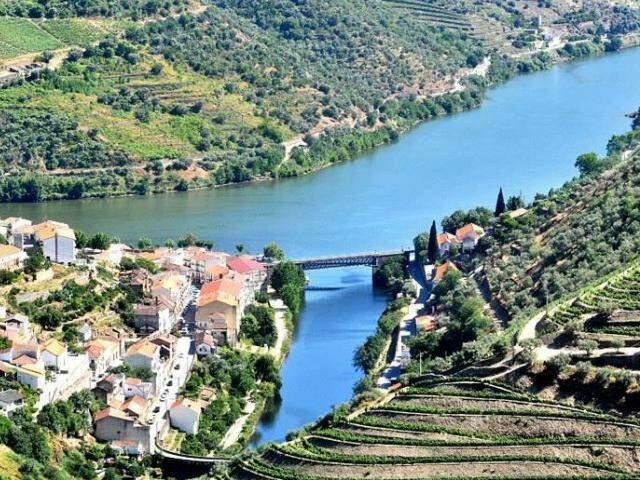 Vinhas do Rio Douro, em Portugal