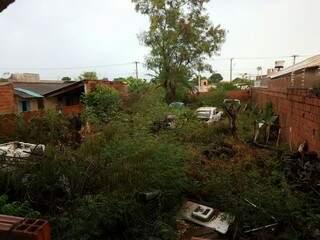 Além dos carros e partes de móveis abandonados, o mato alto oferece ambiente propício para animais peçonhentos e criminosos. (Foto: Direto das Ruas)
