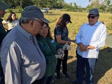 No Pantanal, ministro visita projetos voltados para conservação ambiental