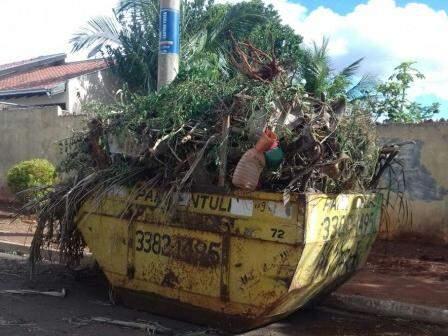 No Monten Castelo,caçamba acumula restos de podas de árvores que passam da altura do muro (Foto: Direto das ruas)