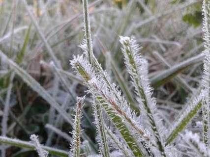 Frio pode ter provocado morte de homem na fronteira com MS