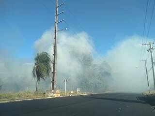 O fogo começou há cerca de duas horas (Foto: Mirian Machado)