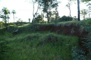 """Cratera tomada pelo mato na área que já foi o lago do Rádio Clube, """"morto"""" pelo assoreamento. (Foto: Alcides Neto)"""