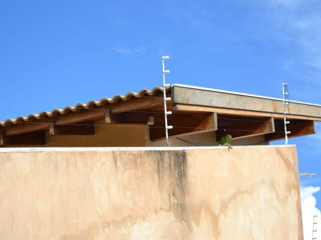 Ararinha para perto de cerca elétrica e mobiliza trabalho do Corpo de Bombeiros. (Foto: Paula Vitorino)