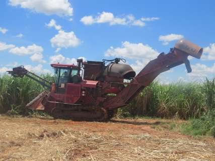 Volume de cana-de-açúcar processada é 18,47% maior do que em agosto de 2014