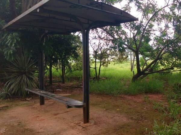 Ponto de ônibus fica em meio ás árvores de praça no Parque dos Novos Estados. (Foto: Adriano Fernandes)