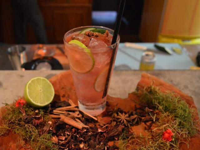 Que tal uma releitura de gim tônica com hibisco? (Foto: Thailla Torres)