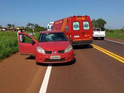 Estudante de 13 anos é atropelado em rodovia e fica em estado grave