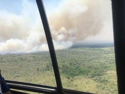 Agravado pelo tempo seco e ventos fortes, fogo devastou 80 mil hectares