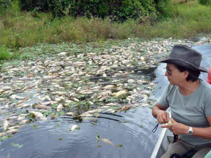PMA e Imasul suspeitam que decoada possa ter provocado morte de peixes