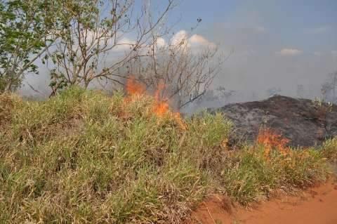 Quente e seco, outubro tem recorde de ocorrência de queimadas em MS