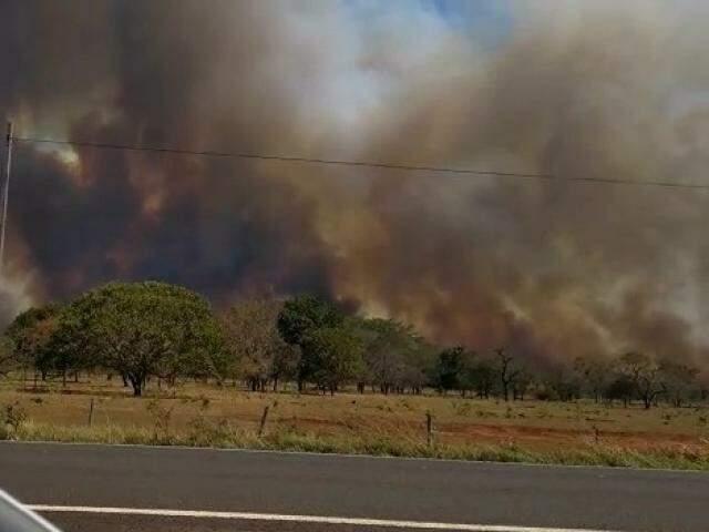 Fumaça escura que se formou devido ao incêndio às margens da rodovia BR-262 (Foto: Direto das Ruas)