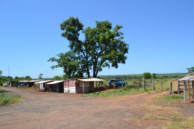 Barracos ainda estão em frente da entrada da fazenda (Foto: Pedro Peralta)