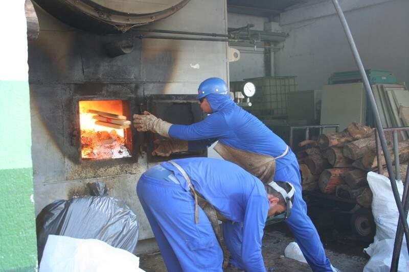 Incineração foi realizada na manhã de hoje em um frigorifico de terenos. (Foto: Divulgação/PF)