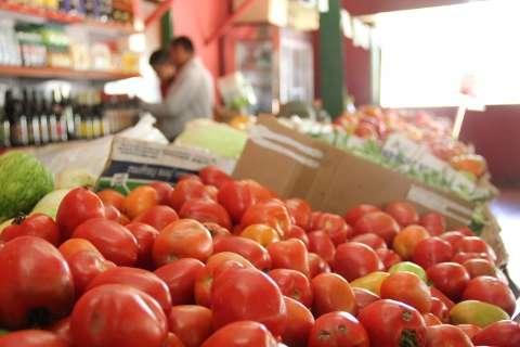 Laranja e tomate ficam mais baratos e derrubam preço da cesta básica