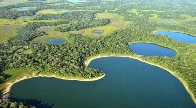 Vista aérea da bacia do Paraguai (Foto: Divulgação/Imasul)