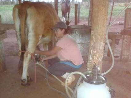 Investimento bilionário do Governo não chega aos produtores de leite