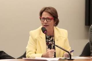 Tereza Cristina é a presidente estadual do PSB de Mato Grosso do Sul (Foto: Divulgação)