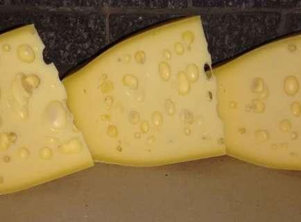 Após 19 anos, queijo de Paraíso das Águas ganha até propaganda do presidente