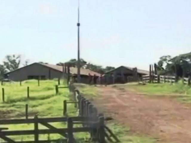 Fazenda Água da Mata, no município de Primeiro de Maio, no Paraná (Foto: Reprodução/Youtube)