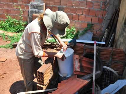 De janeiro até março, Sesau registrou 1.253 casos de dengue em Campo Grande