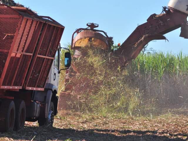 MS foi um dos últimos estados a finalizar a safra por conta das chuvas. (Foto:  João Garrigó/João Garrigó)