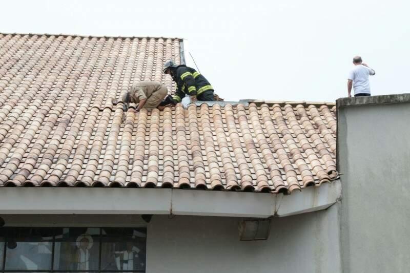 Equipe subiu no telhado para verificar situação, mas chamas já haviam sido controladas (Foto: Fernando Antunes)