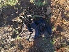 Funcionário da CCR encontra ossada humana à beira de rodovia