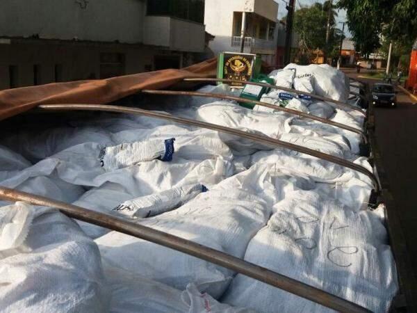 Defensivos agrícolas estavam em caminhão que seguia para a Capital (Foto: Divulgação/DOF)