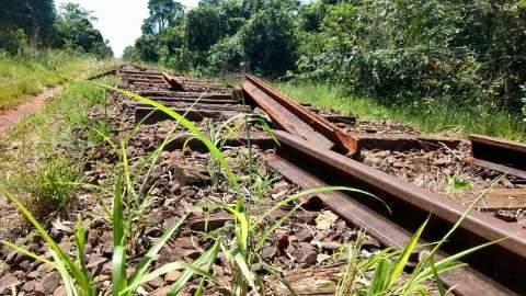 Quatro dias após denúncia, trilhos furtados são devolvidos à ferrovia