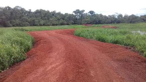 Fazendeira  é autuada em R$ 10 mil por degradar o meio ambiente