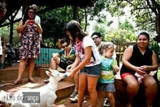 Crianças conhecem a criação de caprinos do local; sítio produz queijo de cabra e usa nas receitas feitas por um chef