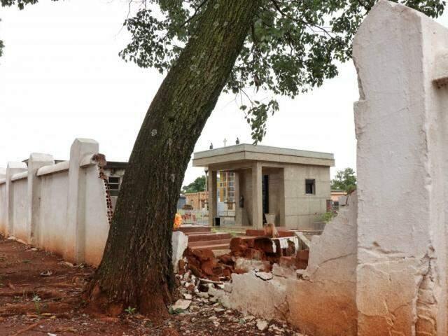 Árvore plantada rente ao muro forçou pesou sobre muro que acabou cedendo durante chuva (Foto: Henrique Kawaminami)