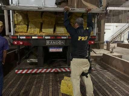 Maior apreensão em MS, caminhão levava 28 t de maconha