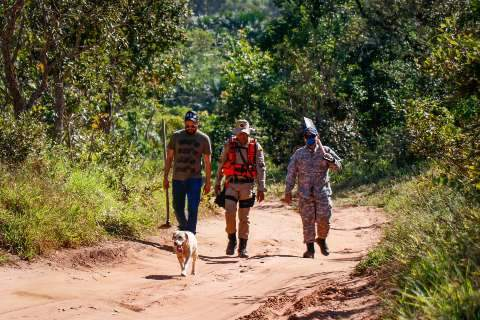 Em 90 mil metros quadrados, cães não acham pistas do paradeiro de Graziela
