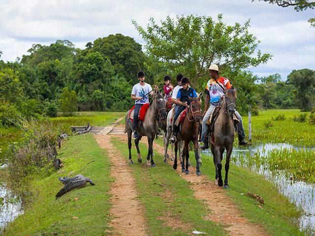 O passeio a cavalo no Pantanal é uma dos atrativos do turismo de naturea para quando a pandemia passar (Foto: Reprodução)
