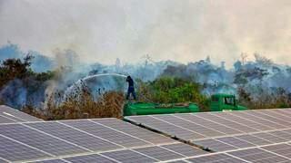(Foto: Jeferson Prado/Sesc Pantanal)