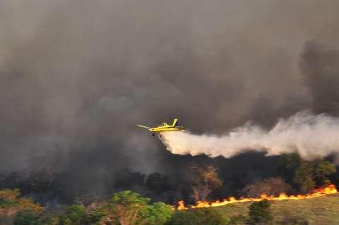 Fogo consome 8,8 mil hectares de vegetação no Parque do Rio Taquari