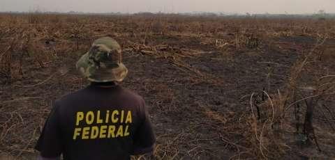 Perícia deve ajudar na identificação dos responsáveis por fogo no Pantanal