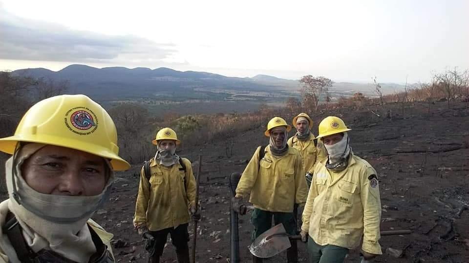 À frente do lado esquerdo, seu Renato fazendo o registro junto dos demais brigadistas durante trabalho de combate às chamas.