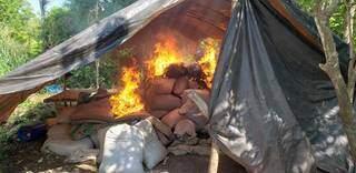 Acampamento usado por plantadores de maconha, destruído em operação (Foto: Senad)