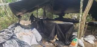 Acampamento usado por traficantes para processar maconha (Foto: Divulgação)