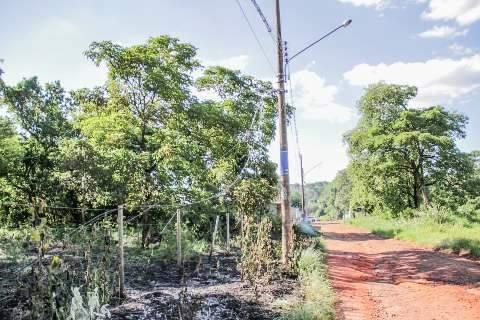 Caminhão arrebenta fios de telefonia, que invadem terreno que pegou fogo