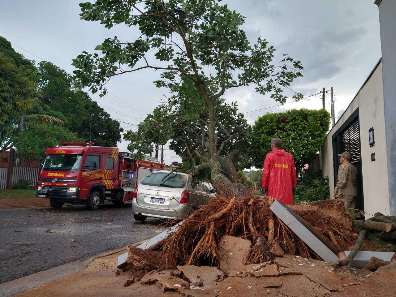 Ávore não resistiu aos ventos fortes, durante chuva, e caiu sobre veículo; calçada também ficoou danificada (Foto: Aletheya Alves)