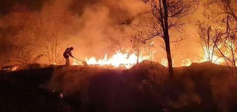 Sem chuva e cheia, cenário  é de queimadas mais devastadoras no Pantanal em 2021